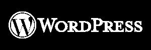 wordpress werbeagentur darmstadt - wordpress 300x100 - Professionelles Webdesign der Werbeagentur Pixelgestalter bei Darmstadt